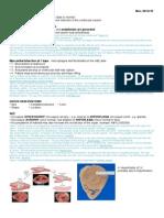 Pathology - Week 1