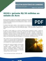 BoletimCarbono36.pdf