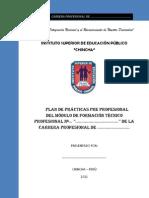 ESQUEMA BASICO DEL PLAN DE PRÁCTICA