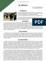 02-bufalos_senasa.pdf