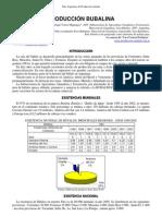 05-produccion_bubalina.pdf