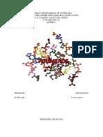 la polimerizacion.docx