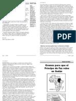 2008_01_gmo.pdf