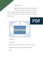 Características que inciden en la fricción.docx