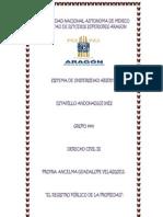 REGISTRO PUBLICO DELA PROPIEDAD.docx
