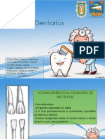 Anatomia Dental Expo 2
