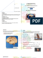 01. Module 1 the Brain