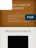 neural basis of memory