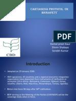 Cartagena Protocol on Biosaefty