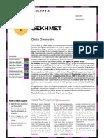 Sekhmet41