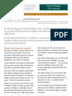 Galvan Budget Report