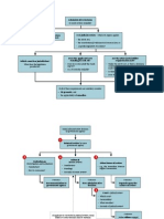 Australian administrative law flowcharts