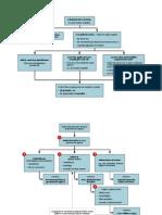 Australian administrative law flowcharts