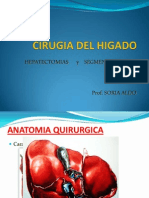 Cirugia Del Higado