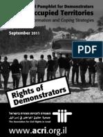 Pamphlet for Demonstrators – Print