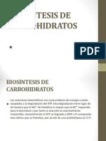 Biosintesisdecarbohidratos