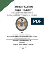 Informe de Experiencia Profesional