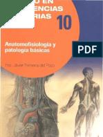 Anatomofisiología y patologías básicas