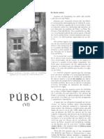 Pubol VI.pdf