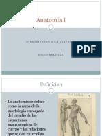 Anatomía Intro