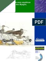 Monitorizacao de Aves Aquaticas Nos Bijagos