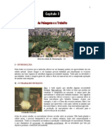 1 - Apostila de Geografia - As Paisagens e o Trabalho - Normal