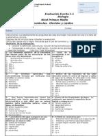 55670173-prueba-2-glucidos-y-lipidos-biologia-1°medio