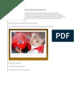 Teknik Membuat Glossy Polaroid Menggunakan Photoshop
