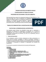 pautas_elaboracion_trabajos_grado.pdf