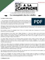 Le Chasseur Français N°609 Août 1946 Page 257