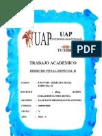 Trabajo Academico Derecho Penal Especial II