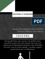 EXPO CEGUERA Y SORDERA.pptx