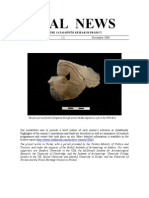 Çatal News 2006