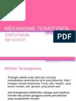 83318353-mekanisme-teratogen