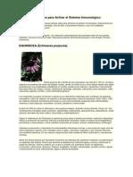 Vegetales utilizados para Activar el Sistema Inmunológico