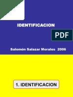 2 IDENTIFICACION PROYECTOS