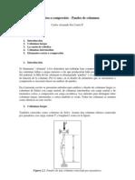 Elementos a compresión - Pandeo de columnas