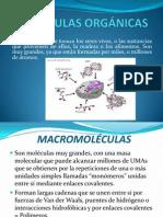 Xi Moleculas (1)
