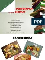 Proses Dan Penyerapan Karbohidrat (1)