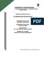 elaboraciondelbocashi-110404204044-phpapp02