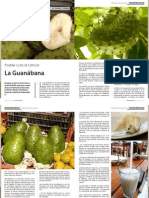69274595 Planta Guanabana o Graviola