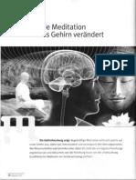 Ott Ulrich - Wie Meditation das Gehirn verändert-