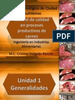 Clase Procesamiento de Carnes