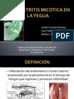 Endometritis Micotica en La Yegua