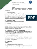 etimologc3ada-paeg-2012-2013