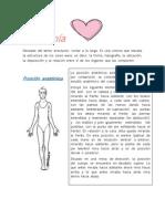 Anatomía b y h