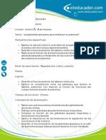 plan leccion _las_glandulas_sexuales.pdf