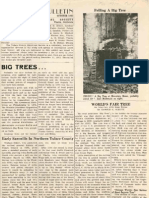 Felling of the Giant Sequoia Tree General Noble for 1892 Chicago World's Fair