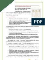 ENSAYO ERGNOMIA UNIDAD 3.docx