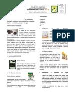 Anexos 01 Fertilizantes y Correctivos